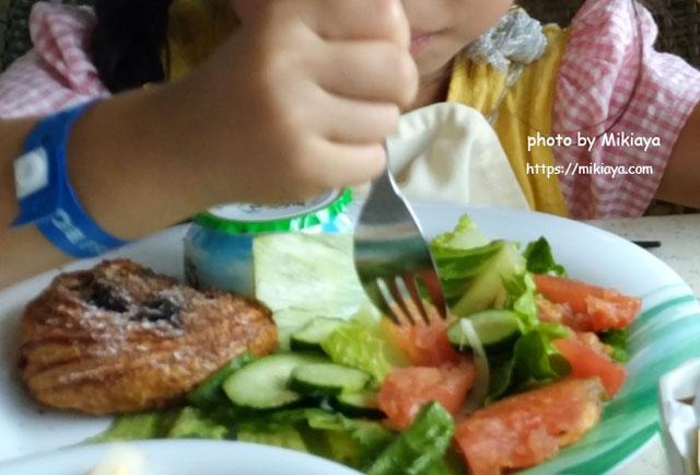 娘の撮ってきたご飯の画像